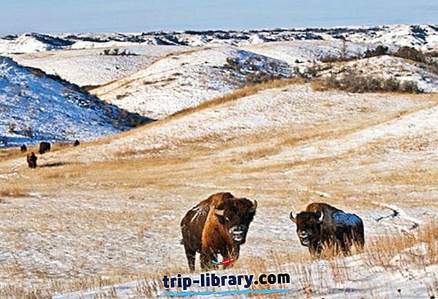 9 Top-rated turistattraktioner i North Dakota