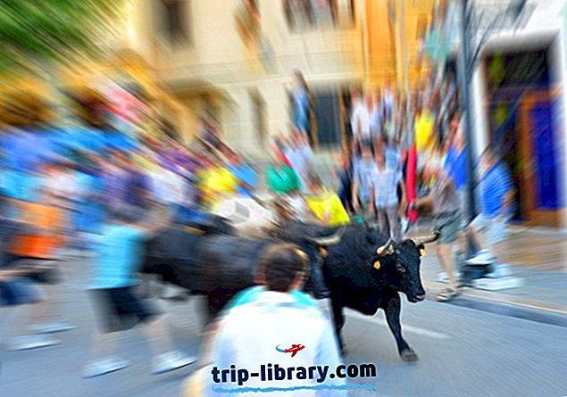 12 najlepších turistických zaujímavostí v Pamplone & Easy Day Trips