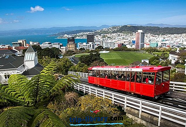 14 Top-rated turistattraktioner i Wellington