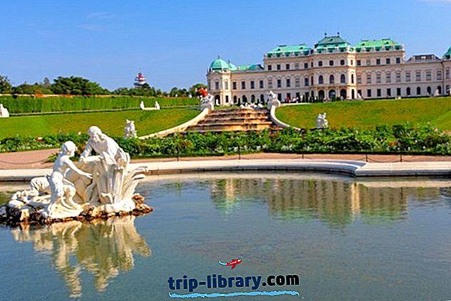 ウィーンのベルヴェデーレ宮殿を探索する:訪問者のガイド