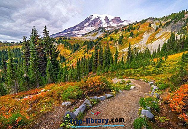 12 Top-hodnocené turistické stezky na Mount St. Helens