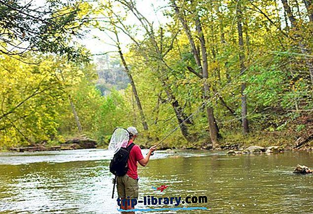 10 najlepiej ocenianych rzek i jezior do łowienia pstrągów w Wirginii Zachodniej