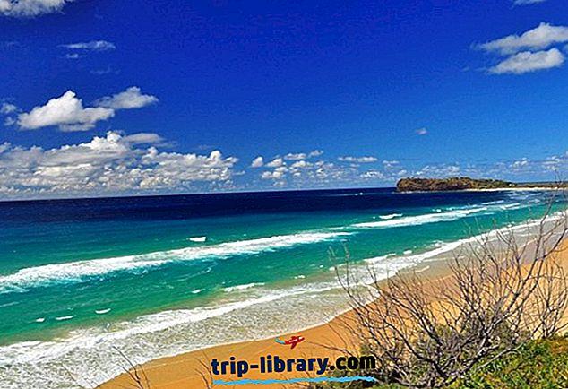 11 أعلى تصنيف الجذب السياحي & أشياء للقيام بها في جزيرة فريزر
