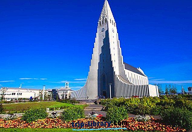 12 Nejlépe hodnocené turistické atrakce a aktivity v Reykjavíku