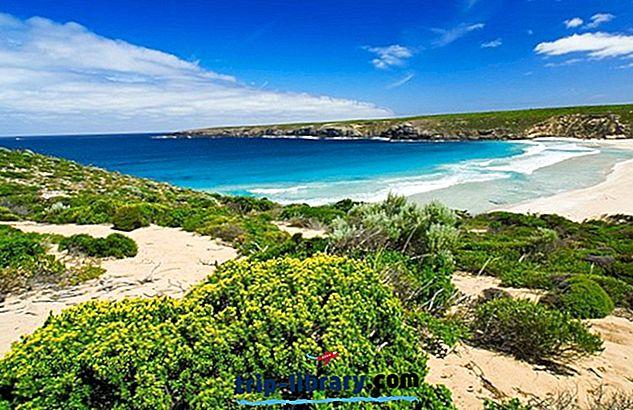 11 Kangaroo saare turismiobjektidest