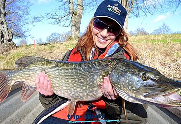 11 bedste fiskeri destinationer i Irland