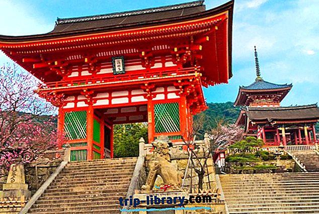 9 Bedst bedømte dagsture fra Osaka