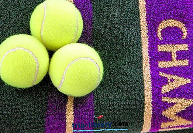 10 atracciones turísticas mejor valoradas en Wimbledon, Inglaterra