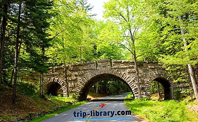 Acadia National Park: 15 Top Hikes & Sights, Camping, og Overnatningssteder i nærheden