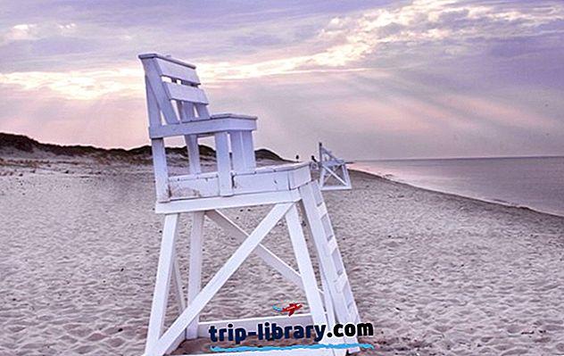 केप कॉड पर 14 टॉप रेटेड समुद्र तट