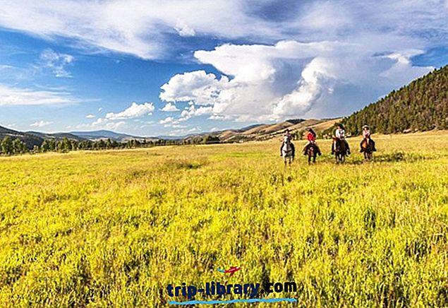 12 Teratas Resort di Montana