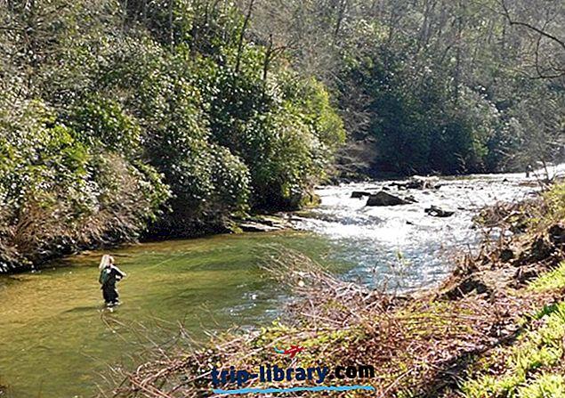 10 Nejlépe hodnocených řek pro lov pstruhů v Severní Karolíně