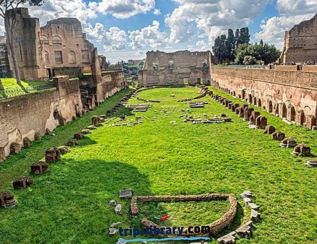 Palatine Hill(ローマ)の口コミトップ観光スポット、ヒントとツアー