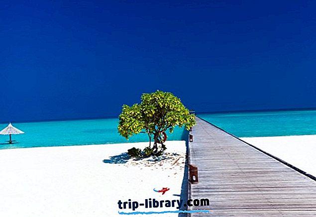 15 Bedste tropiske ferier