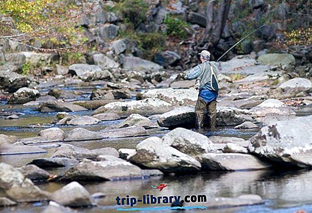 12 Melhores destinos de pesca com mosca do Tennessee