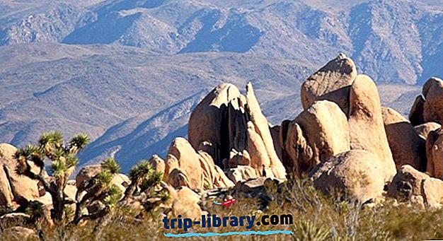 6 Nejlepší Kempink v Joshua Tree National Park & Camping Podrobnosti