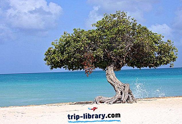 11 populaarsemaid turismiobjekte Arubas