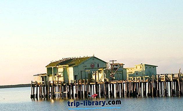 12 лучших достопримечательностей и интересных мест в Half Moon Bay