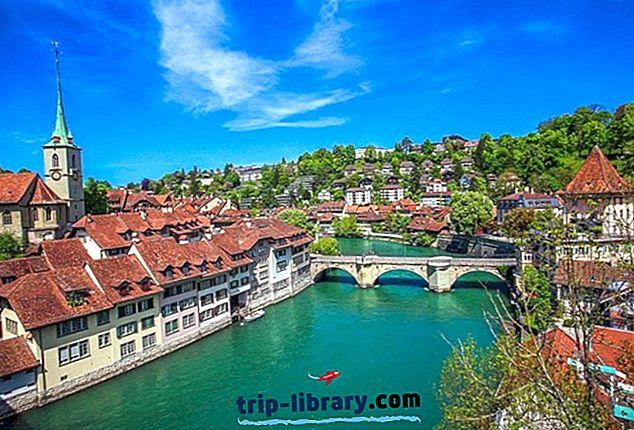 14 베른의 주요 관광 명소 및 쉬운 당일 치기 여행